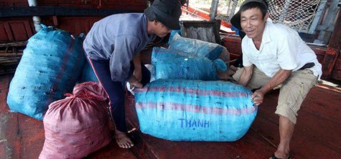 930 tấn mực khô ứ đọng vì Trung Quốc không mua