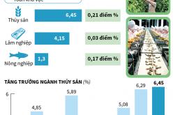 6 tháng năm 2019: Ngành thủy sản là điểm sáng của khu vực nông, lâm, thủy