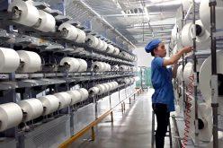 Doanh thu các mặt hàng mới tăng mạnh, Sợi Thế Kỷ (STK) báo lãi tăng 21% trong quý II