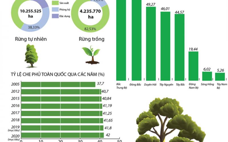 Phấn đấu tỷ lệ che phủ rừng toàn quốc năm 2020 đạt 42%