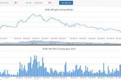 Giá cổ phiếu giảm liên tục, loạt sếp HBC liên tiếp đăng ký mua vào