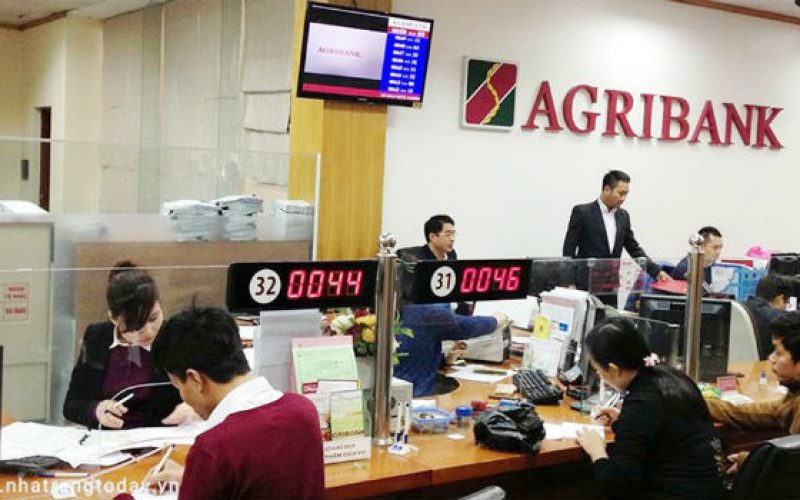Chuẩn bị cổ phần hóa, Agribank báo lãi đột biến 8.200 tỷ đồng 7 tháng đầu năm 2019