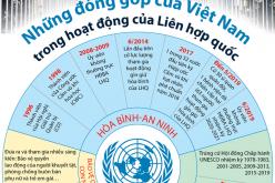 Những đóng góp của Việt Nam trong hoạt động của Liên hợp quốc