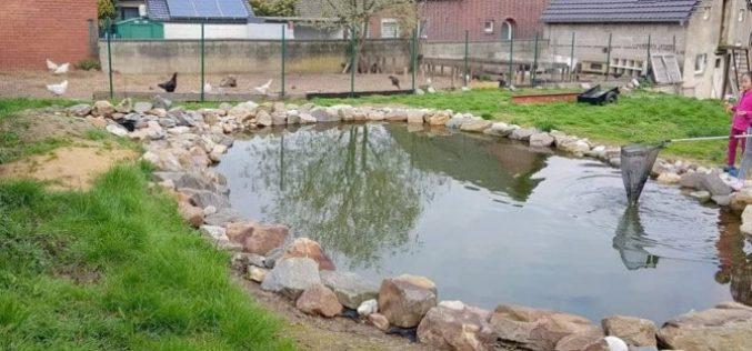 Gia đình Việt làm 'vườn – ao – chuồng ' tại Đức