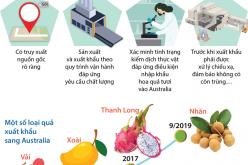 Nhãn tươi Việt Nam chính thức được nhập khẩu thị trường Australia