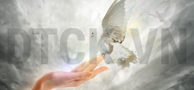 Nhận định thị trường phiên 21/11: Ngân hàng, bất động sản, khu công nghiệp vẫn được xem là cơ hội mua