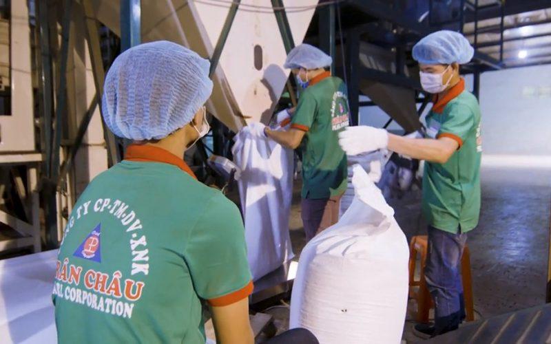 Cuộc giải cứu 58 container hồ tiêu ở nước ngoài vẫn chưa rõ điểm đến