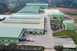 An Tiến Industries (HII): Dòng tiền kinh doanh tiếp tục âm, lãi ròng quý II giảm 24%