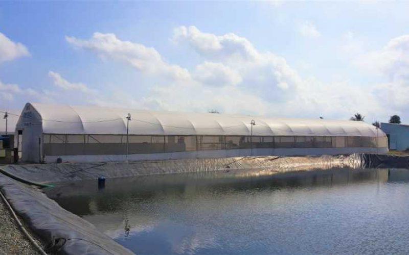 ADM thúc đẩy giảm cường độ sử dụng nước và chất thải chôn lấp